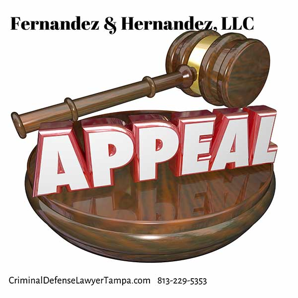 Appeals Attorney Tampa Florida